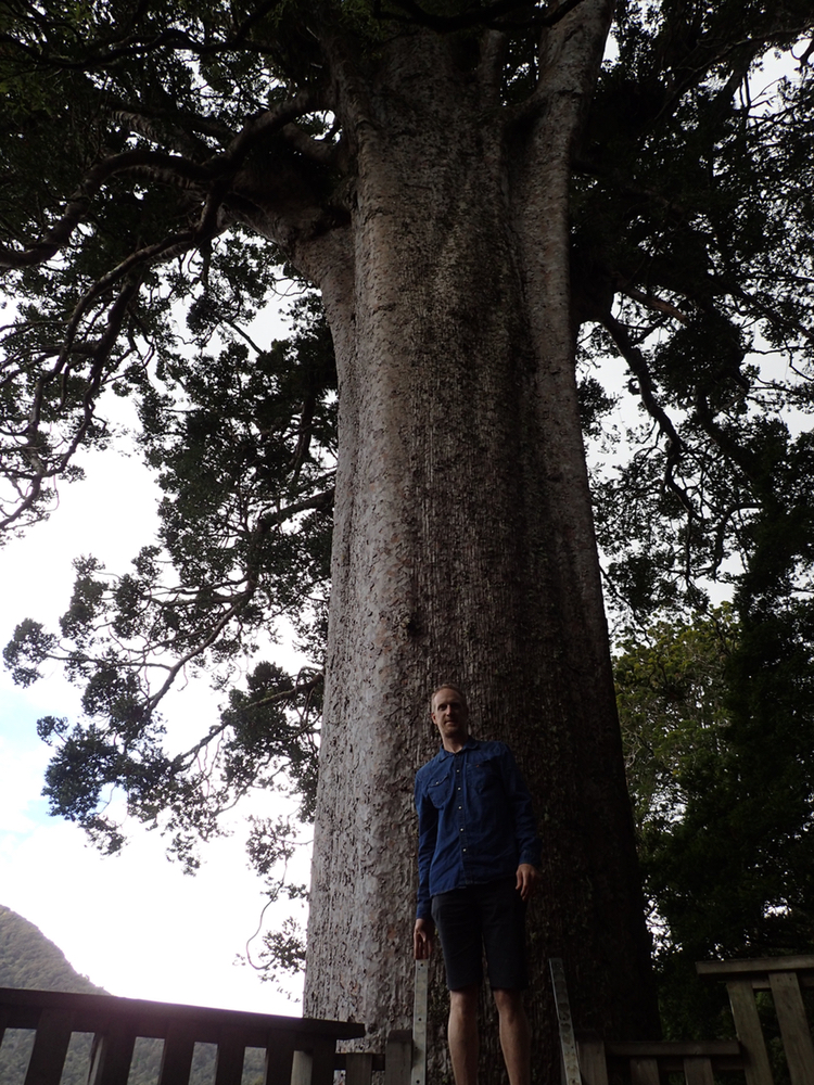 Big tree & me.jpeg