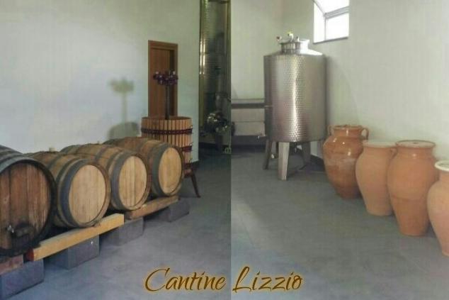 Cantine Lizzio.jpg