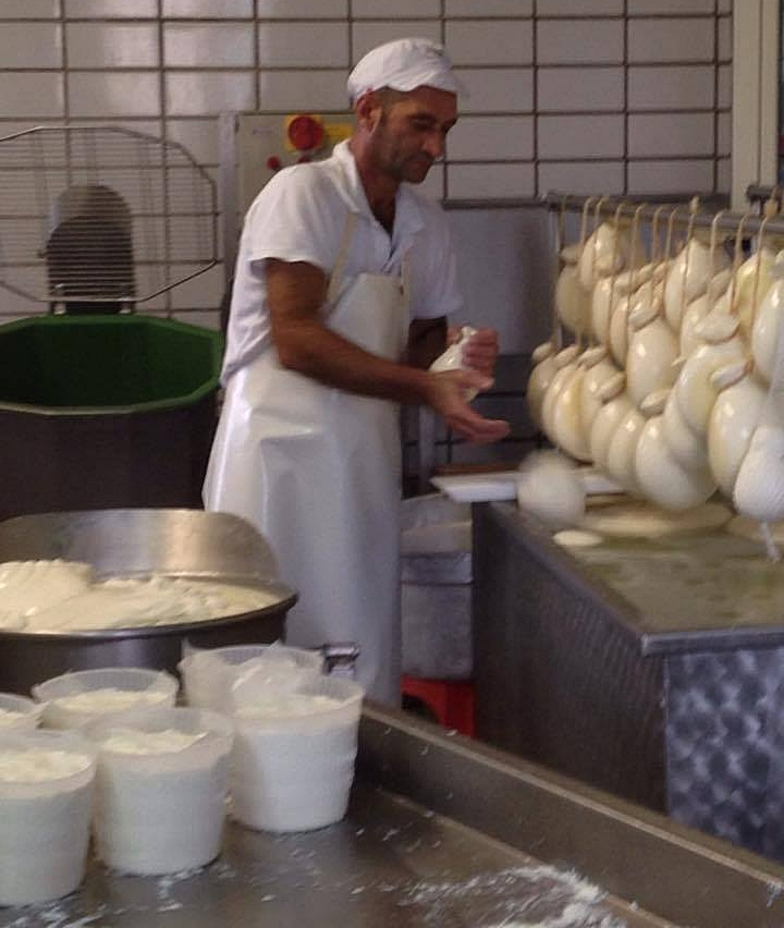 visit to the cheese factory