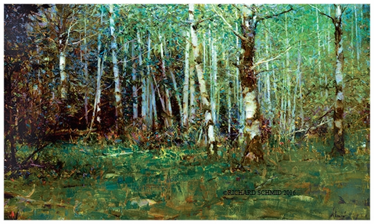 """Aspen Forest- Rocky Mountain National Park"" Artists' Proofs. ©Richard Schmid 2016"