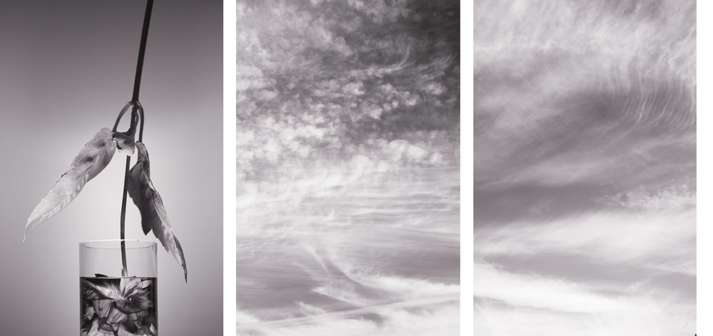 "Tsunami, triptych     (2011) three archival pigment prints 18"" x 12"" each"