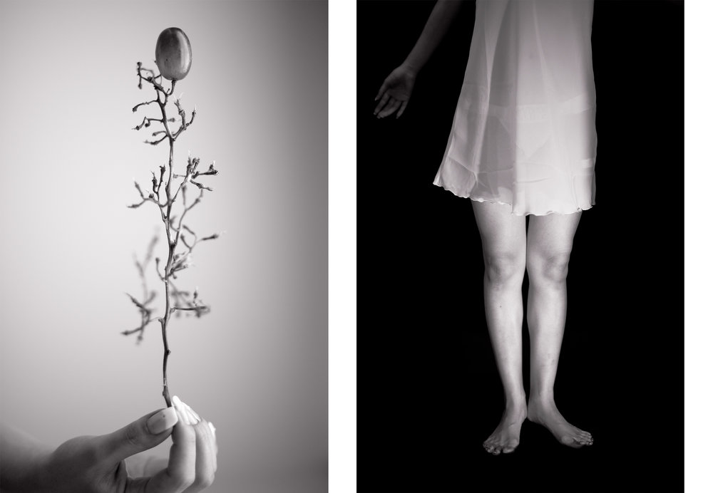 Untitled, diptych   (2012)