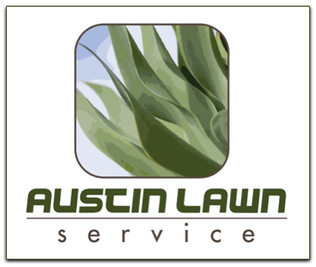 An Overview of Xeriscaping: An Interview with Paul Rutowski of The Austin Lawn Service