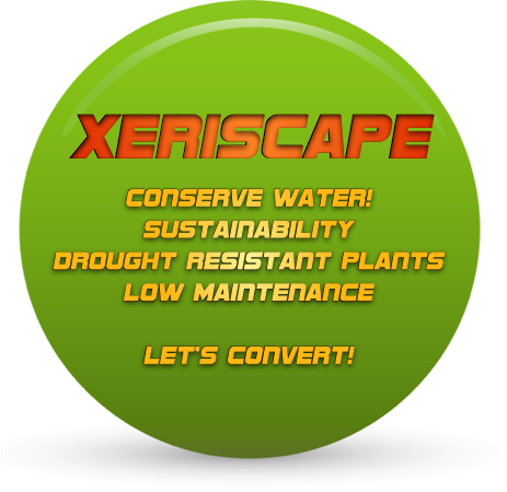 Xeriscape is the future. Water Conservation, Sustainable and Low Maintenance. It is also a responsible to our environment of today.  Contact us for a free Lawn Design with execution of the lawn conversion efforts.