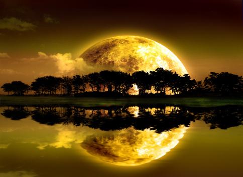Moon's Reflection.jpg