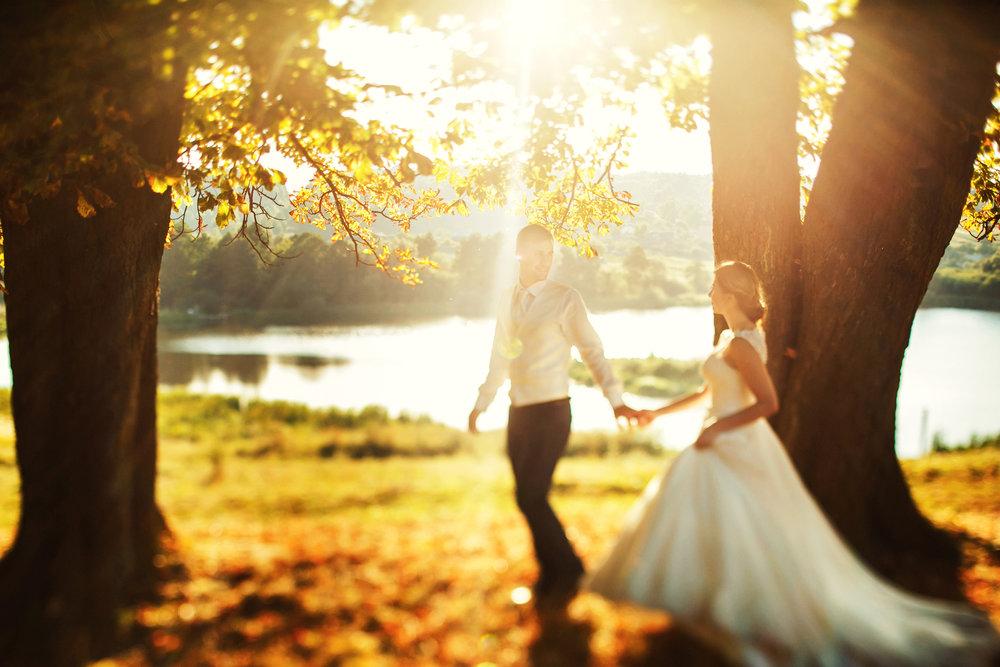 Genesis 24 - How Isaac Met Rebekah.jpg