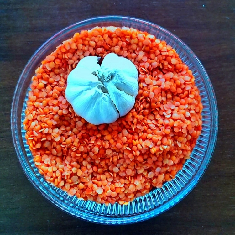 Lovely Lentils  (photo by susanne iles)
