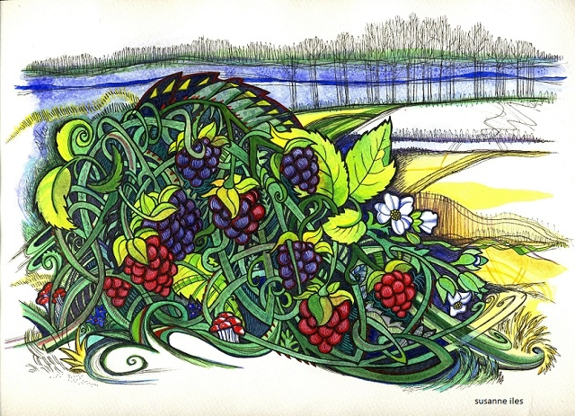 Blackberries, original painting by Susanne Iles