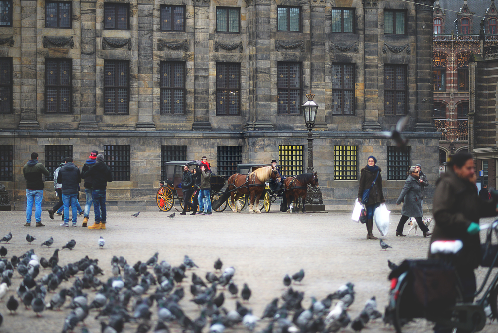 Amsterdam - 01.jpg