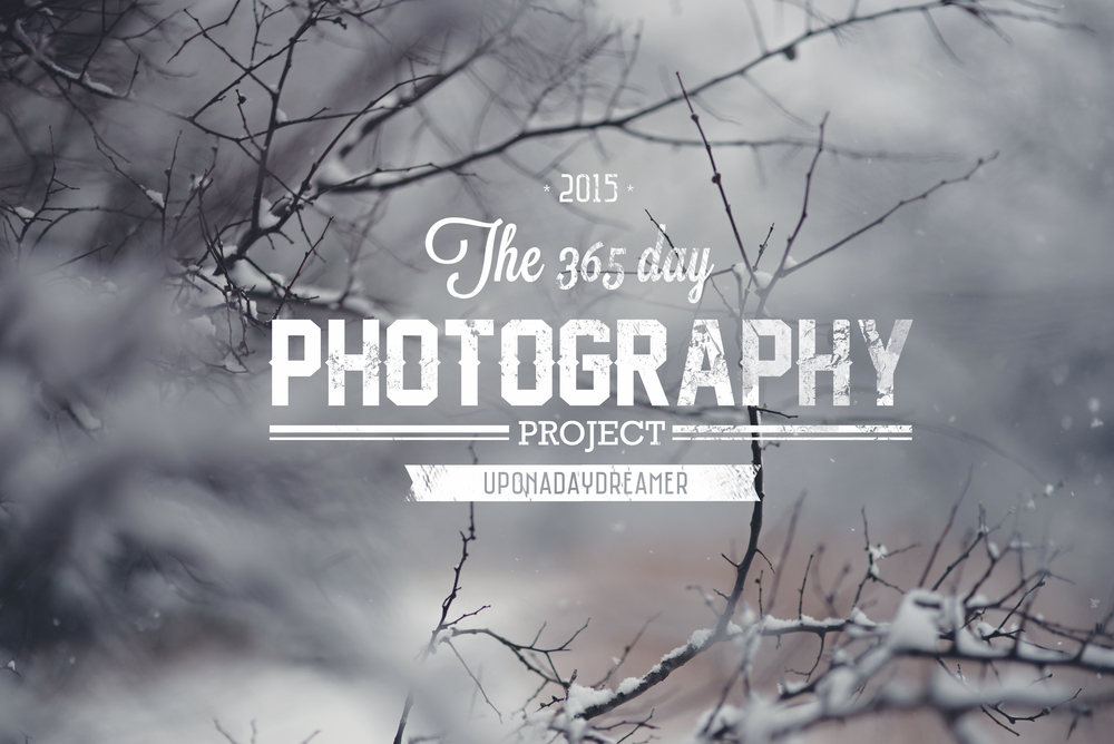 2015's 365 Photo Project