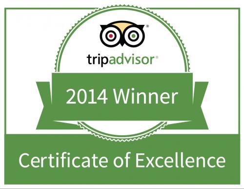 trip advisor excelence.png