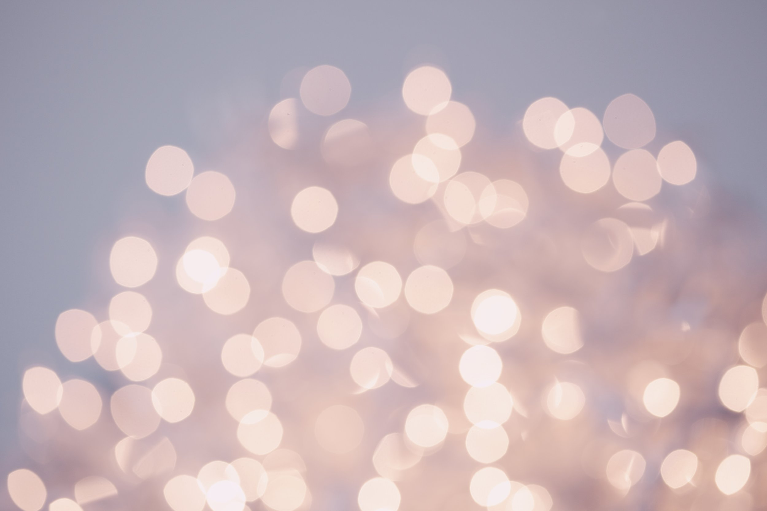 12 Free Glitter Overlays — Kori Evans Photography