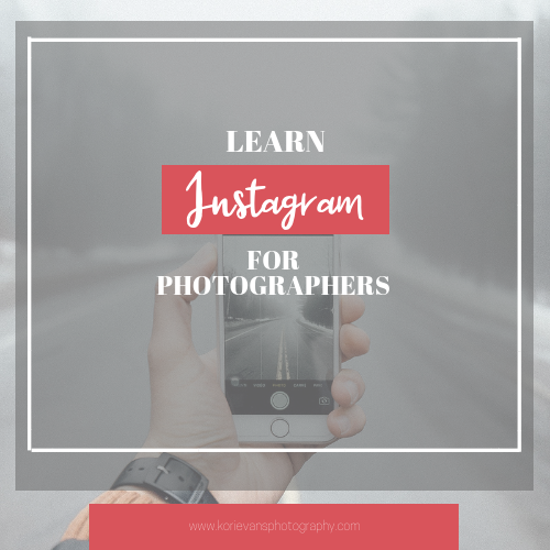 Learn Instagram For Photographers - By following the advice in this free course, I guarantee you will grow your following, and your engagement. With the end goal to gain more clients and make more money in your photography business.