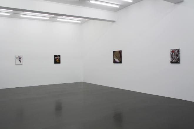 Zephyr - Sies and Hoke (2010)