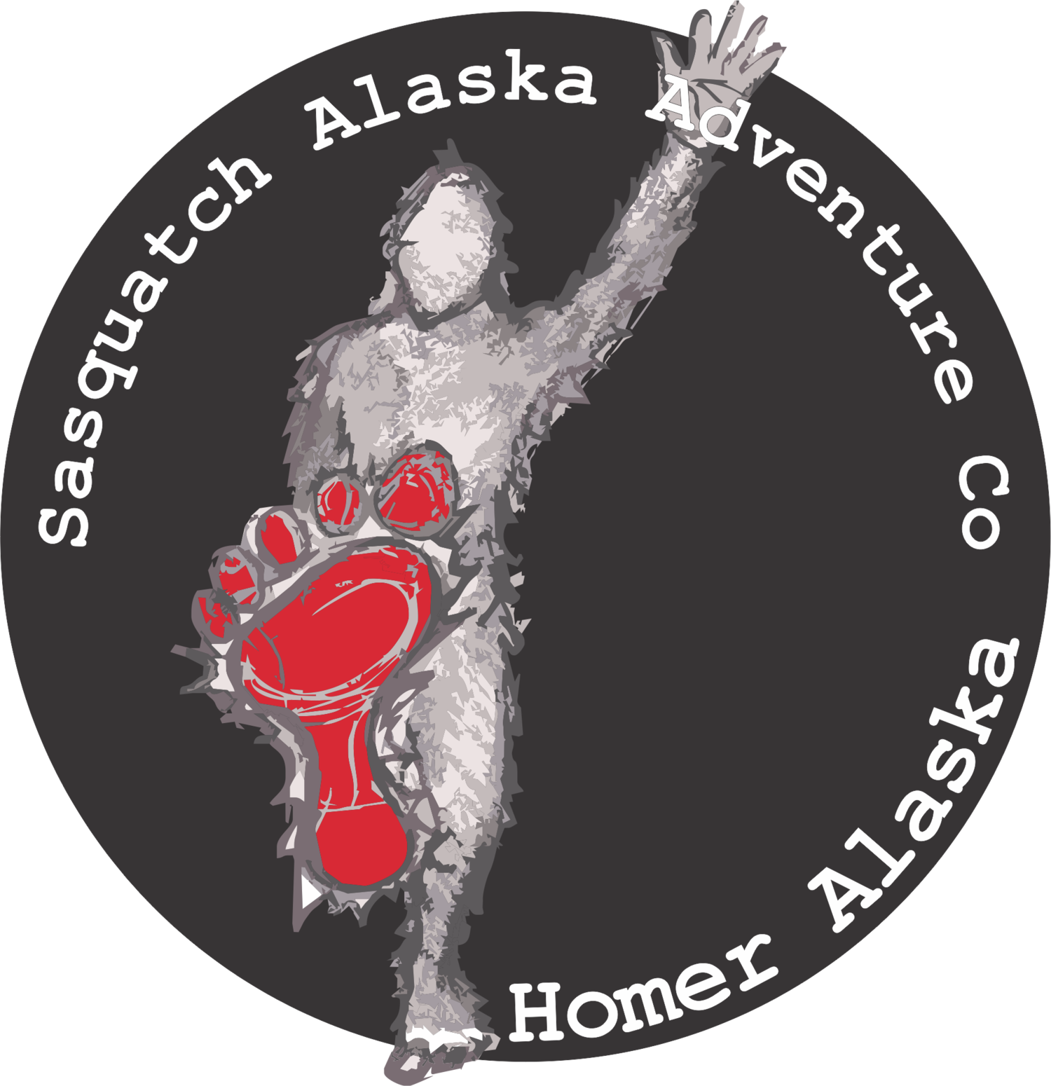 Sasquatch Alaska: Bear Viewing, Camping tours & Flight Seeing