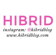 hibrid blog.jpg