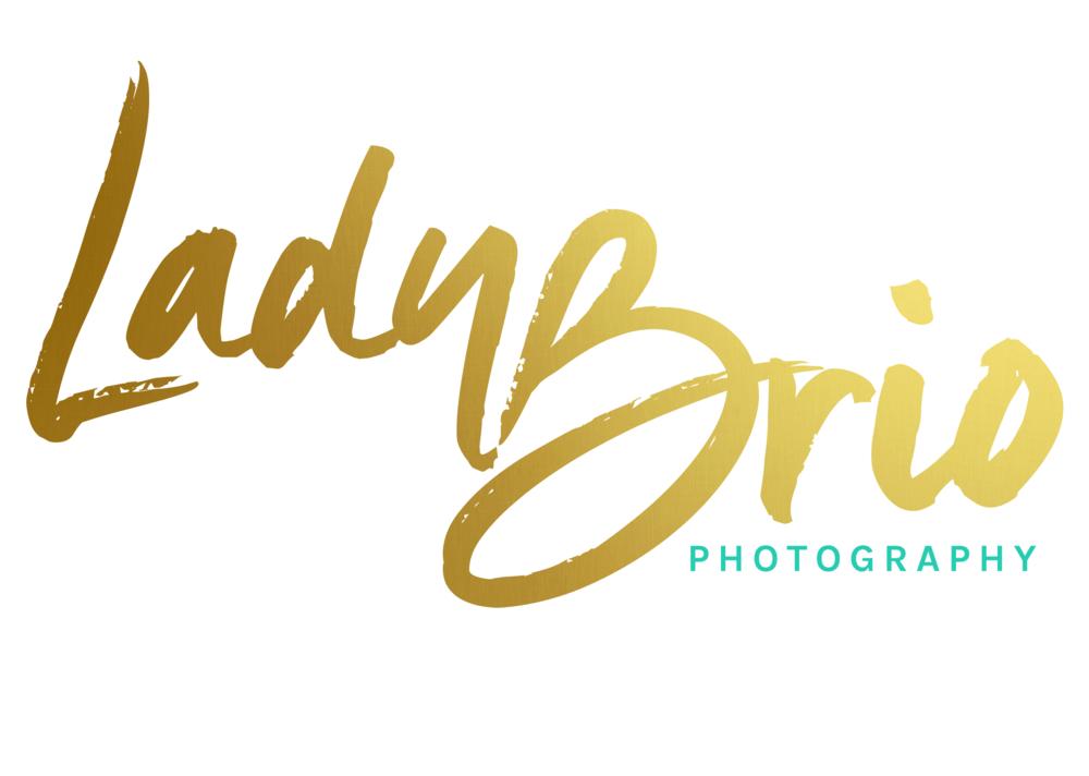 logo brio white bg.png