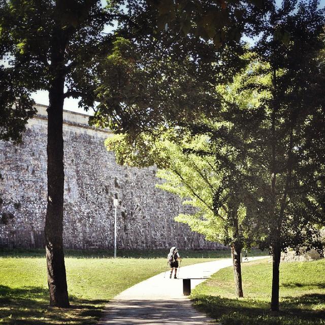 La entrada de peregrinos a Pamplona