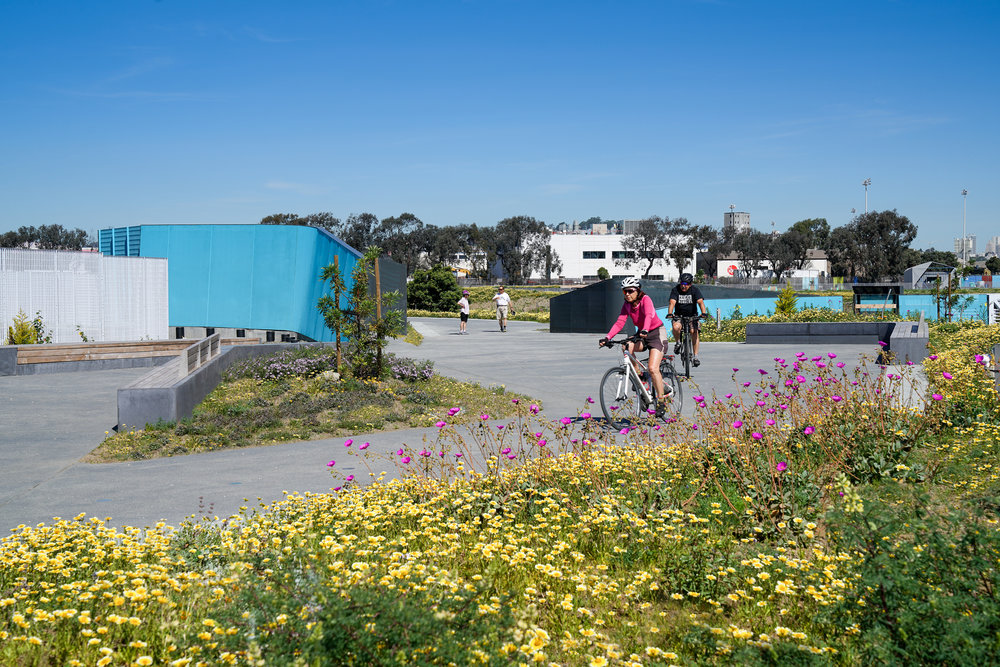Shoreline Rehabilitation & Restoration