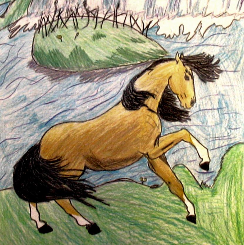horse annabel.jpg