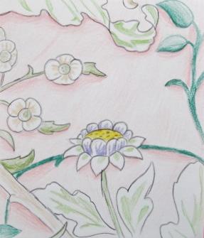 flower sketch emily.JPG