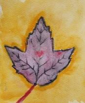 leaf zoey 1.JPG