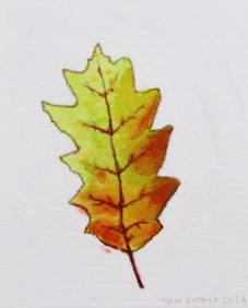 leaf tyler 2.JPG