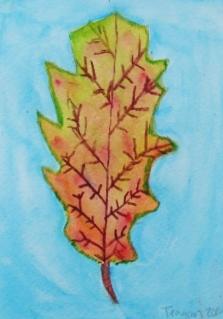 leaf teagan.JPG
