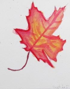 leaf sophie.JPG