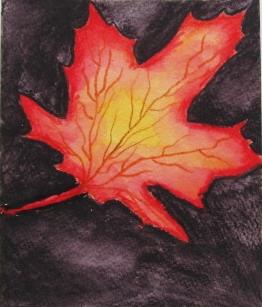 leaf noah.JPG