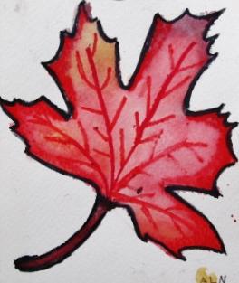 leaf lucy.JPG