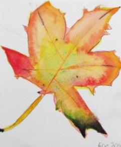leaf erin 1.JPG
