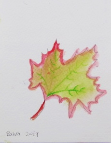 leaf bahra.JPG