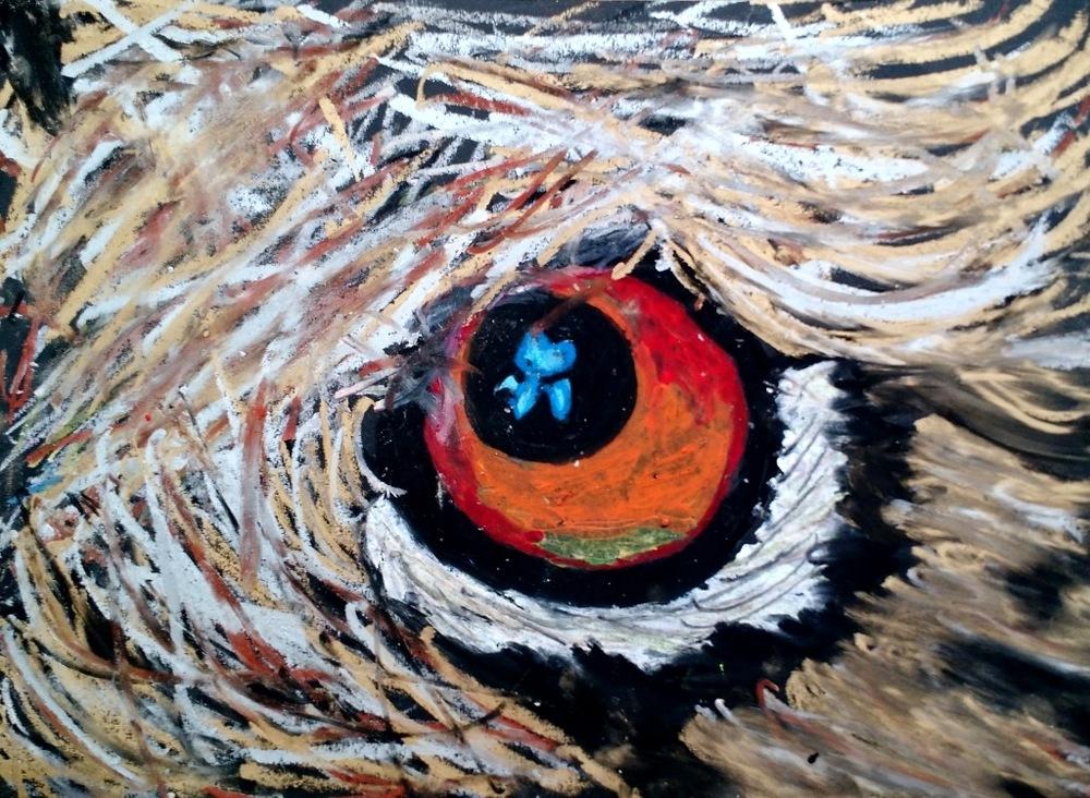 eye maeve m.jpg
