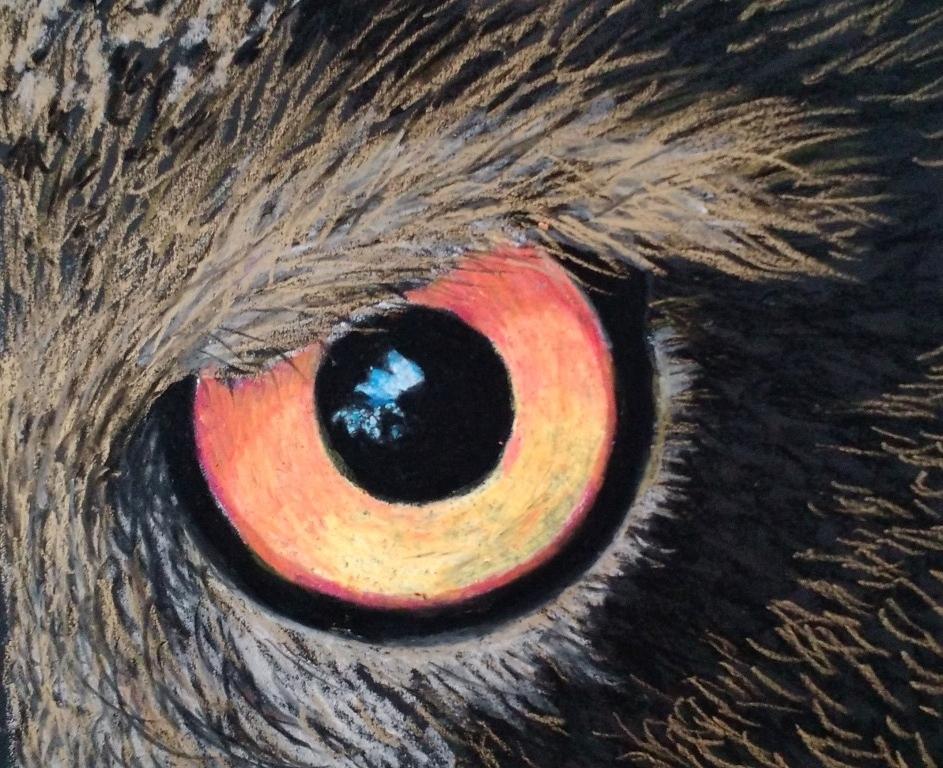 eye denice.jpg