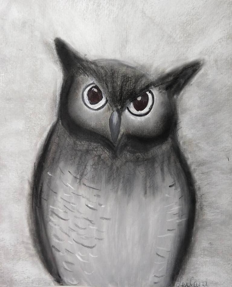 owl leilani.jpg