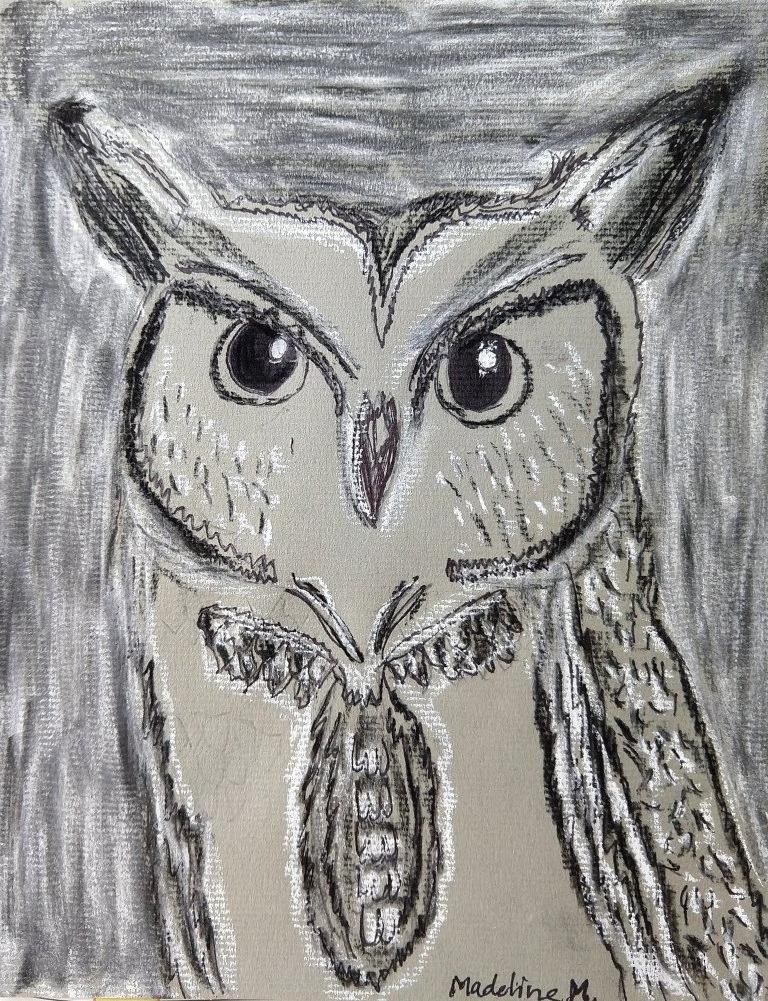 owl maddie.jpg
