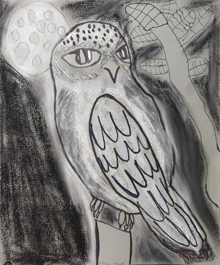 owl victoria.jpg