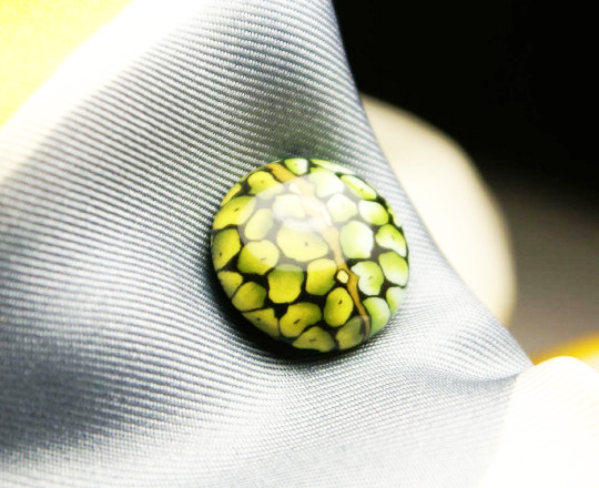 Lizard eye magnetic tie tack MagTAK lapel & hat pin