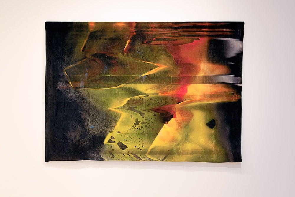 Slithering  3 (Velvet) ,Photograph (from  Slithering )printed onto velvet, 183cm x 152cm (6' x 5'),2014