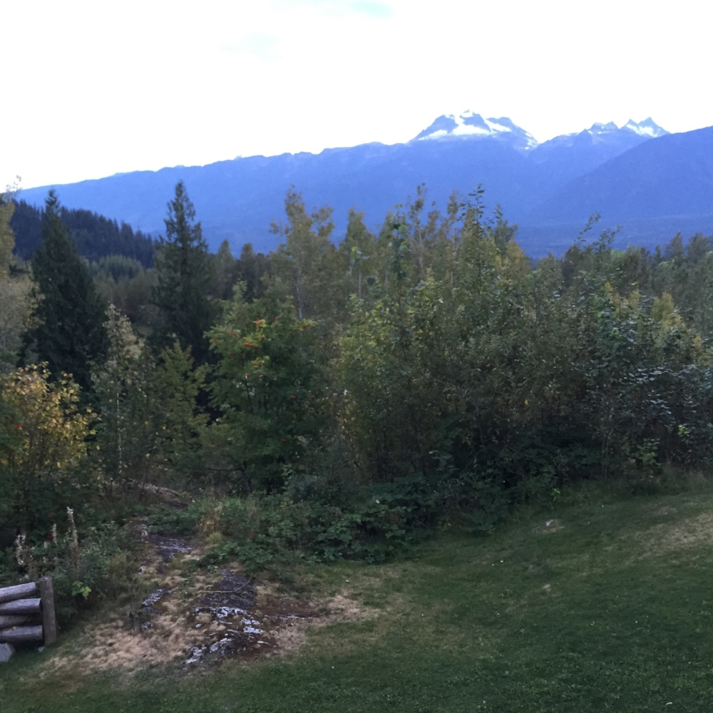 Revelstoke - came with a bear warning.