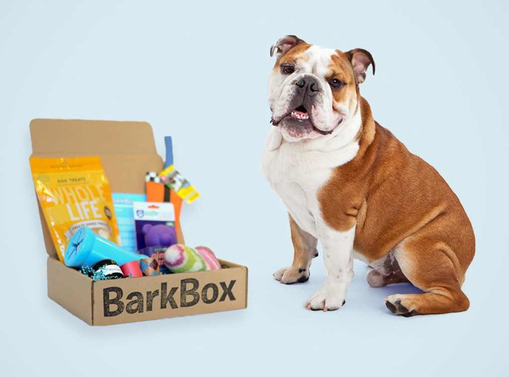 rs_1024x759-131107131811-1024.BarkBox-Subscription.ms.110713.jpg