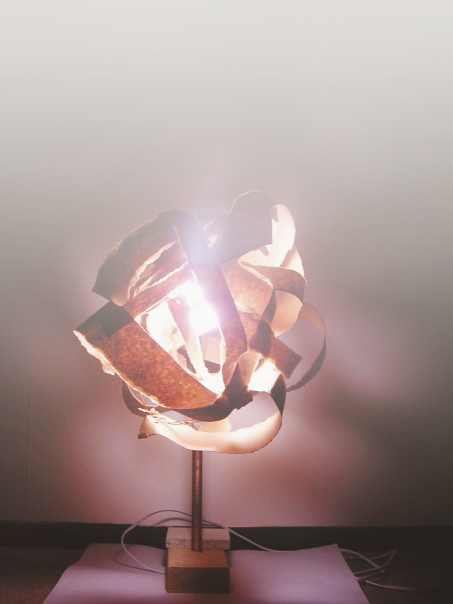 Inspiration lamp. I made this one with garbage and copper wire.
