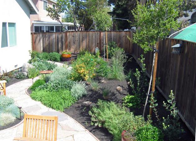 garden over.jpg