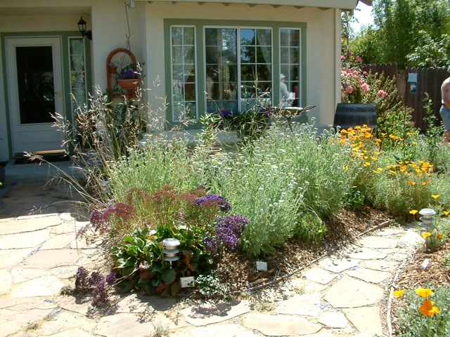 Lose the Lawn Retrofits — Kat Weiss Landscape Design