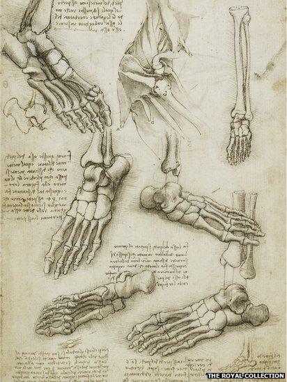Leondardo Da Vinci's anatomical drawings are a beautiful reflection of the human body.