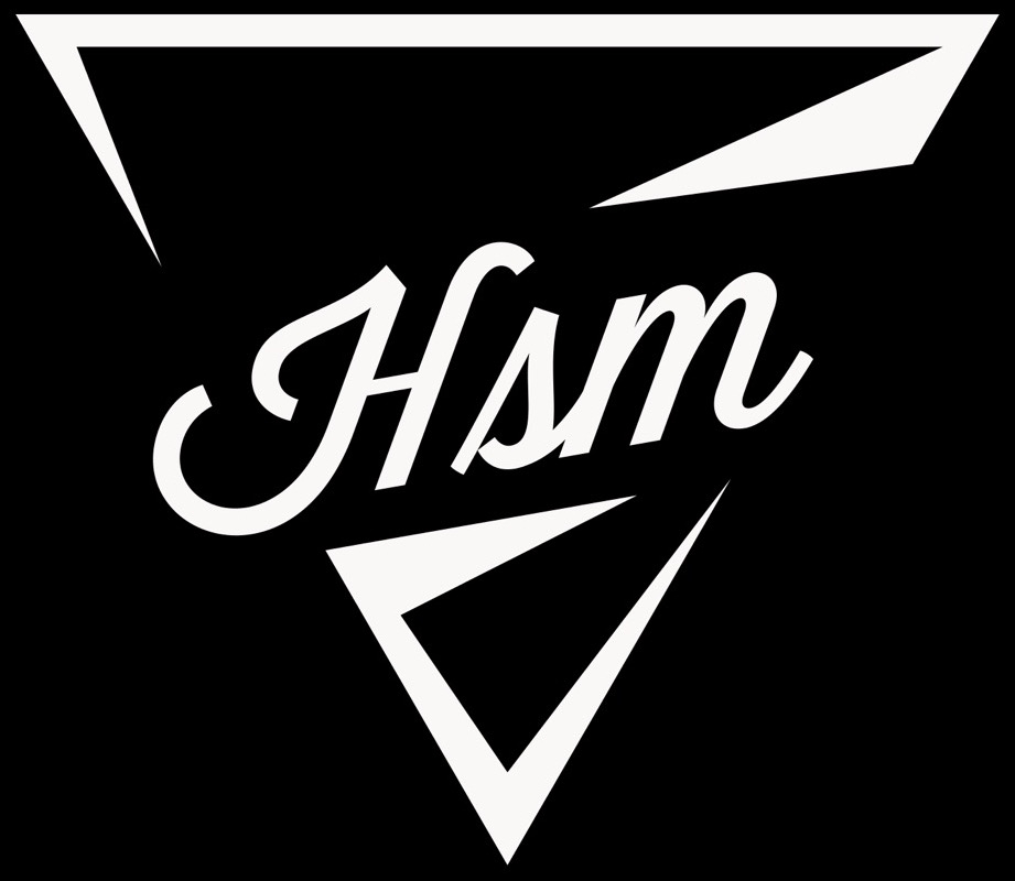 HSM New Traingle Logo 3.jpg