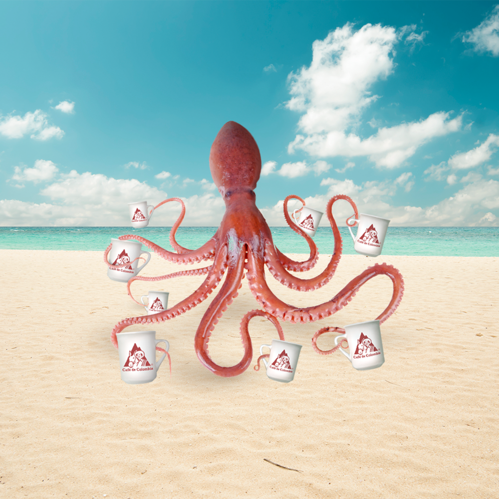 octo_square.png