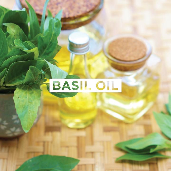 JoMo---Ingredient---Basil-Oil.jpg