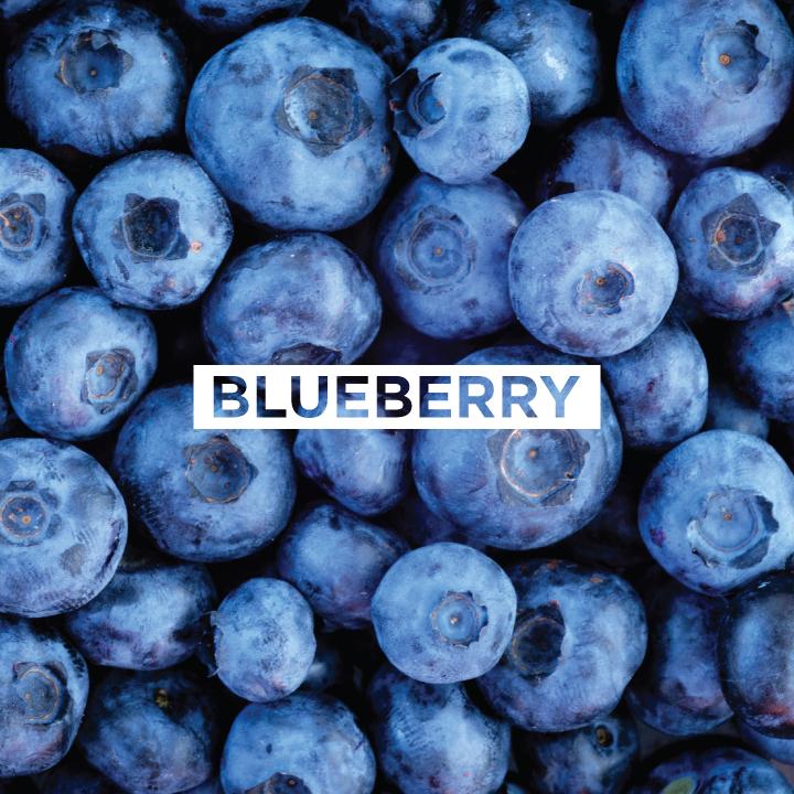 JoMo---Ingredient---Blueberry.jpg
